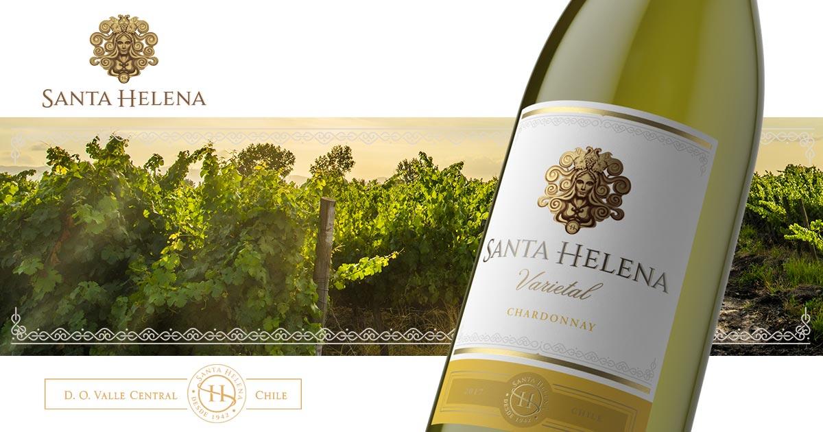 Chardonnay | Santa Helena